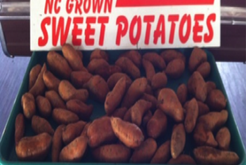nc-sweet-potatoes